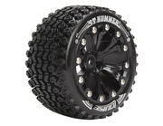 Louise 1:10 ST-Hummer 2.8 inch Truck Tire Mounted on Black Rim - Bearing - Soft (2)